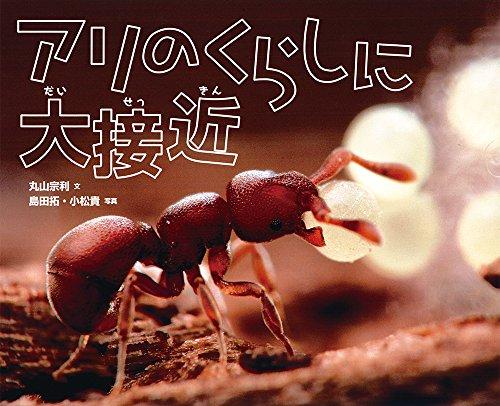 アリのくらしに大接近