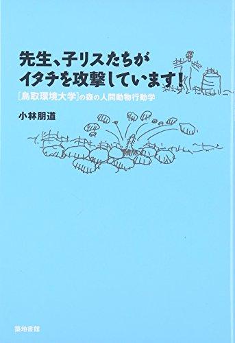 先生、子リスたちがイタチを攻撃しています! 鳥取環境大学の森の人間動物行動学