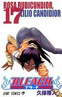BLEACH 17 (ジャンプ・コミックス)